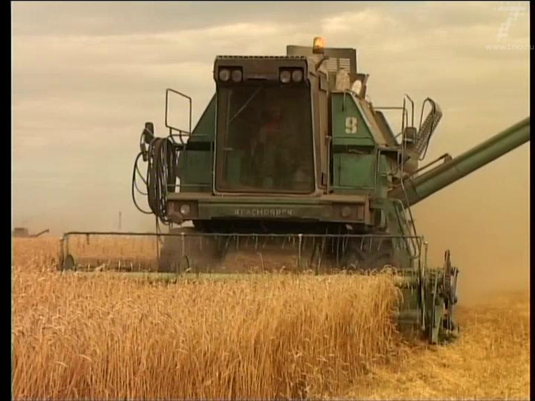 Россельхознадзор намерен продолжать уничтожение санкционной продукции